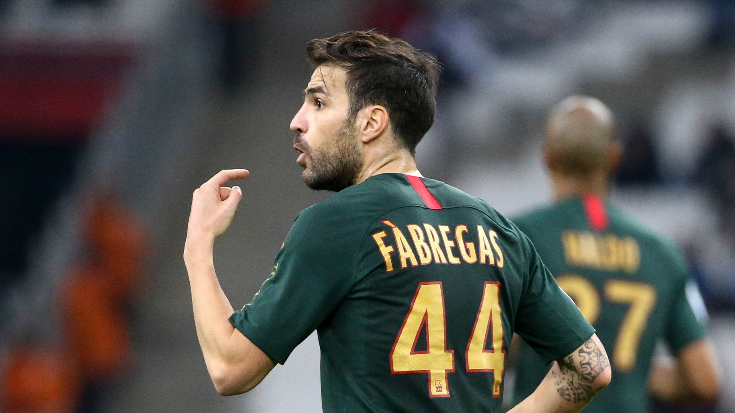 Cesc Fabregas'dan Fransız halkına eleştiri
