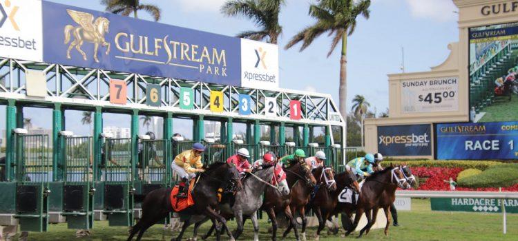 Gulfstream Park yarış bülteni - 16 Mayıs 2020