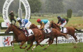 Dusseldorf at yarışı tahminleri - at yarışı sonuçları